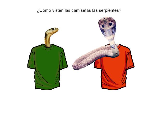 ¿Cómo visten las camisetas las serpientes?