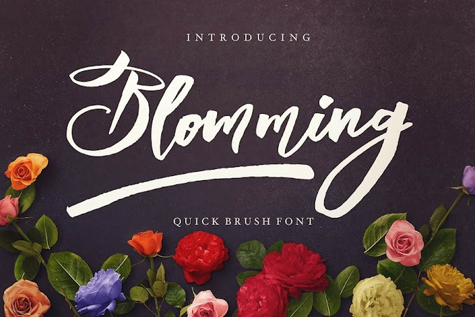 50 Amazing Fonts With Cool Script & Realistic Brush SVG Fonts
