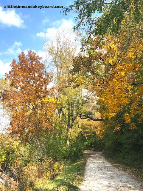 Wandering through a sea of colors at Moraine Hills State Park.