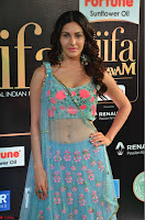 Amyra Dastur in Flower Print Choli Transparent Chunni at IIFA Utsavam Awards 11.JPG