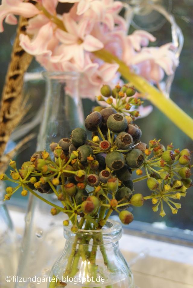 Hyazinthen und Efeubeeren