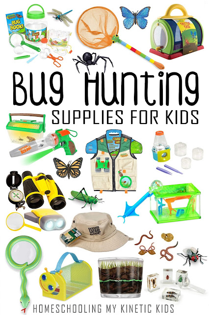 Great gift ideas for bug loving kids to equip them for summer bug hunting!