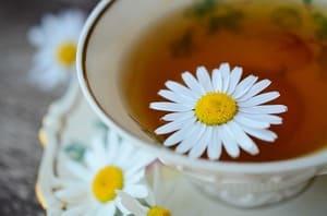 Chá de camomila. depressão , ansiedade