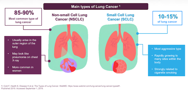 Non-Small Cell Lung Cancer (NSCLC) is the most commonly diagnosed category of cancer