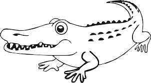 Printable Alligator Coloring Pages Ideas