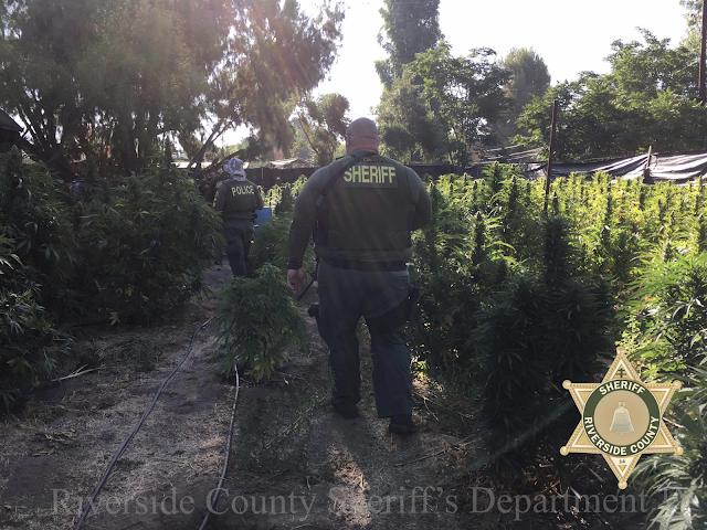 HemetEyeNews: PERRIS - Riverside County Sheriff - 32 search