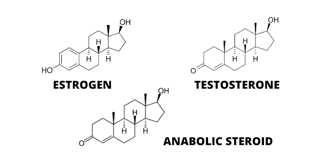 steroid molecular structure match with testosterone and estrogen