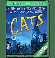 CATS (2019) WEB-DL 1080P HD MKV ESPAÑOL LATINO