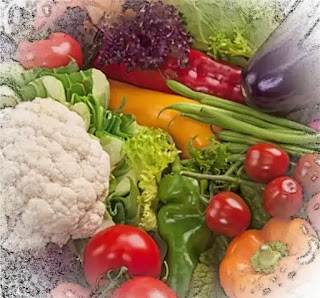 lista micronutrienti esentiali in sarcina si alaptare