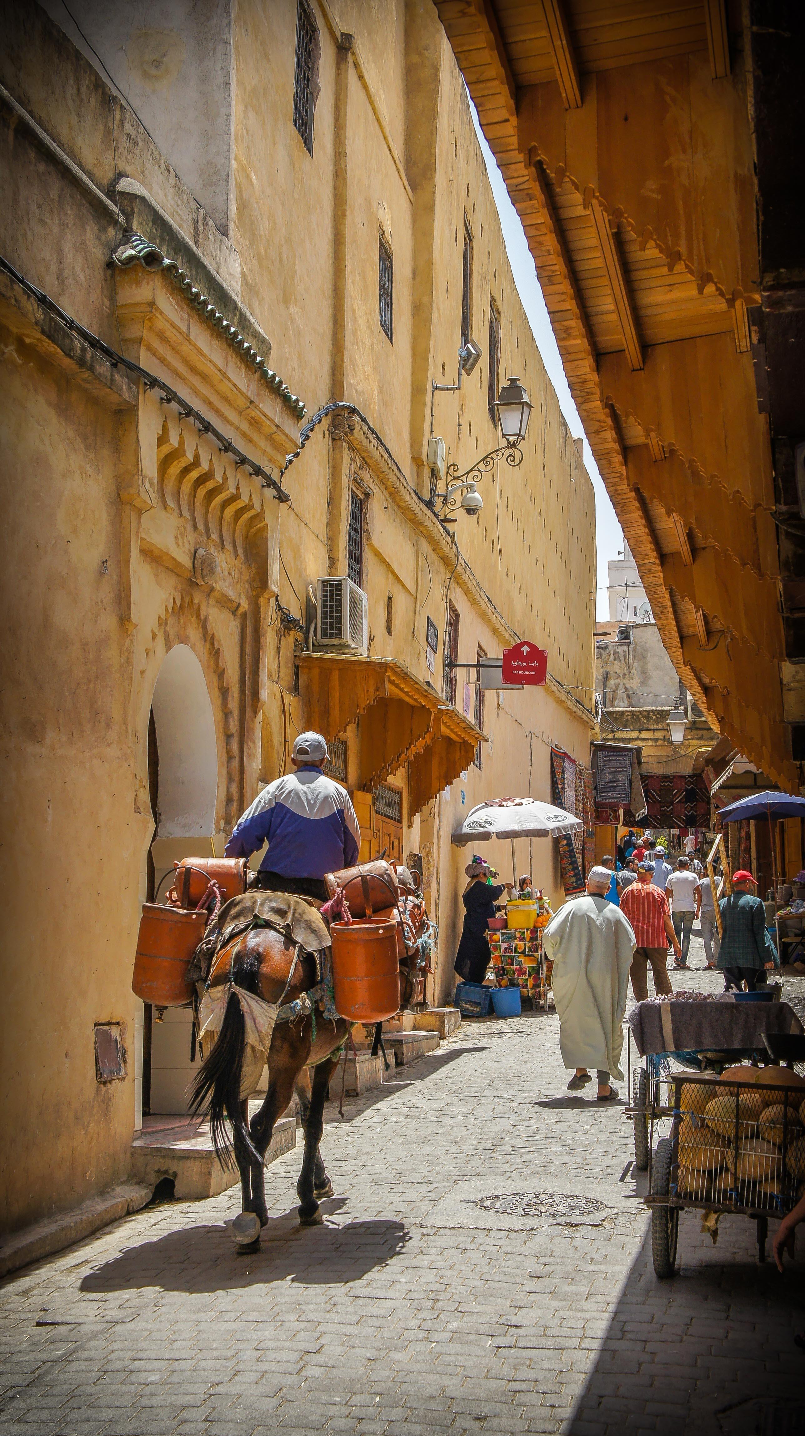 Morocco street with donkey