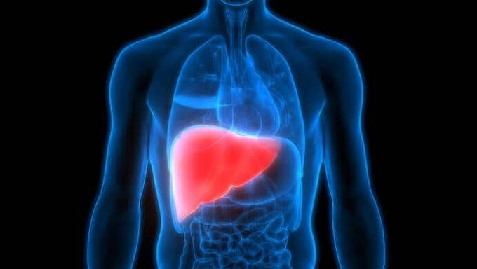 Liver Disease Causes Symptoms and Treatment