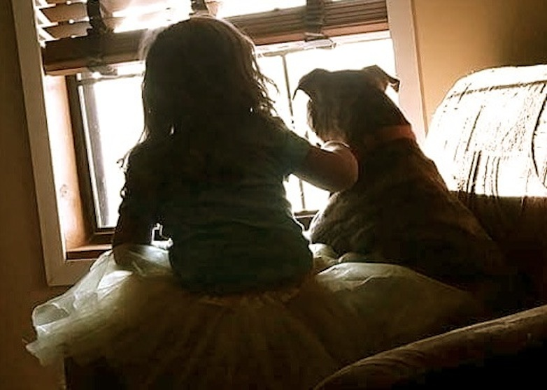 a girl and her heart dog and why families with kids should adopt dogs