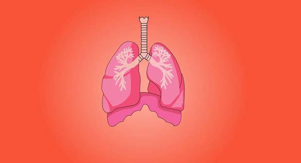 The sufferers of sleep apnea frequently have difficulty getting sound sleep at night for the reason of blockage in their airways. This hindrance wakes them subconsciously to restart their respiration.