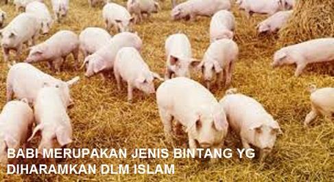 66+ Gambar Hewan Halal Dan Haram Beserta Penjelasannya Gratis Terbaru
