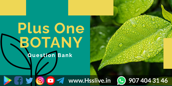 Higher Secondary Plus One Botany Previous Questions & Answers