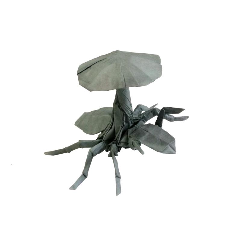 cordyceps-origami