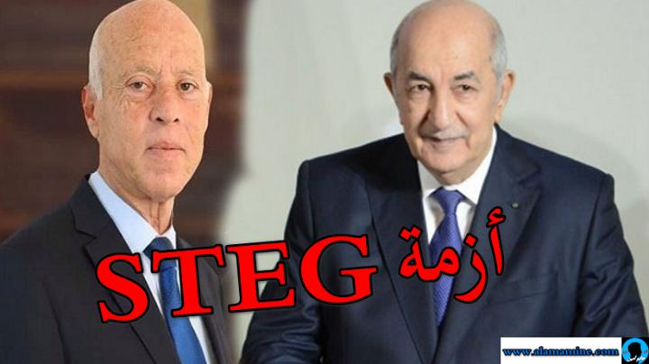 سعيد يطلب من تبون التدخل لتمكين تونس من الغاز الطبيعي أزمة STEG