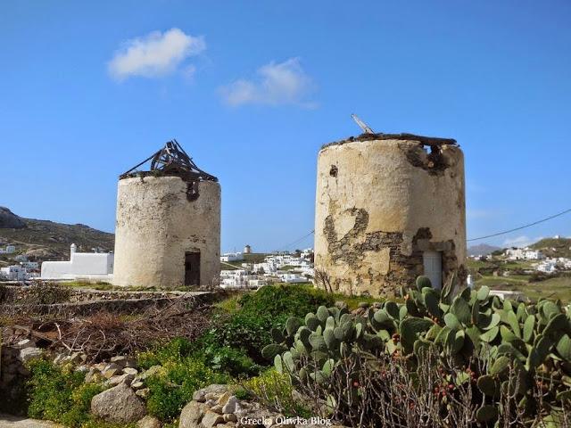 podupadające wiatraki Ano Mery na tle błękitnego nieba i zieleni  Mykonos Grecja