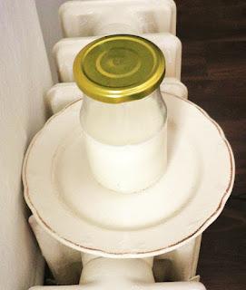auf der Heizung erhält der Joghurt-Ansatz die nötige Wärme, eine Maschine ist überflüssig