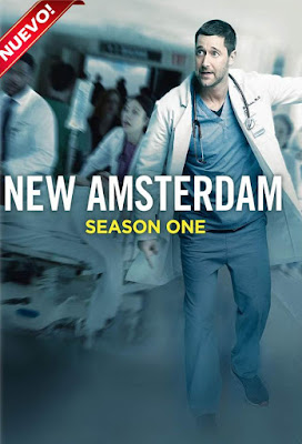 New Amsterdam (TV Series) S01 DVD R1 NTSC Latino 6xDVD5