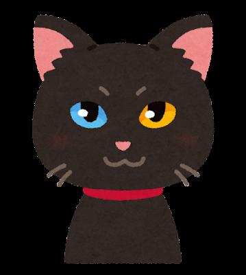 オッドアイの黒猫のイラスト