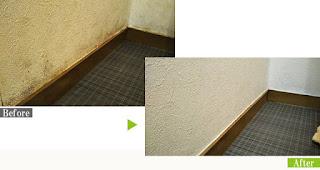 カビ汚れのトイレのクロス(壁紙)にG-Ecoシリーズ環境対応型洗浄剤カビ・ヤニ使用
