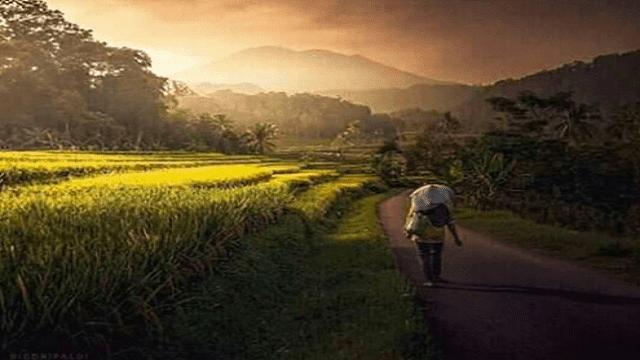 Kumpulan Puisi Bertema Kebudayaan Indonesia