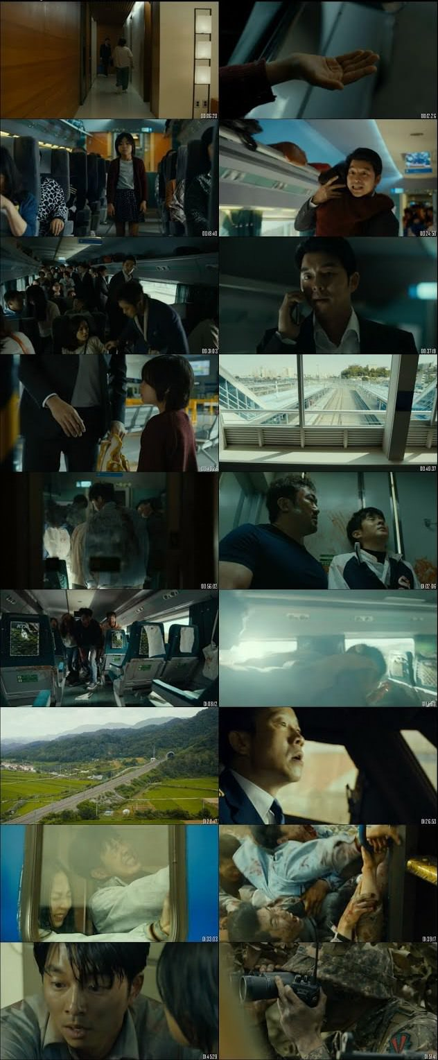 Train To Busan 2016 Dual Audio