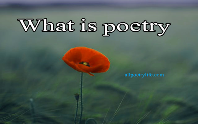What Is Poetry, What Defines Poetry,