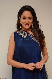 Pragya Jaiswal in beautiful Blue Gown Spicy Latest Pics February 2017 053.JPG