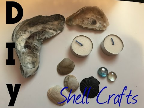 DIY Shell Crafts!