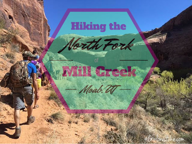 The Best Dog Friendly Waterfalls Hikes in Utah, North From Mill creek Moab