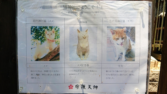 大阪 猫神社 上宮天満宮
