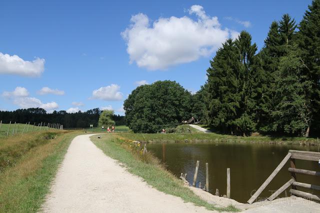 Hunsrück Wildpark Rheinböllen, Fischteich