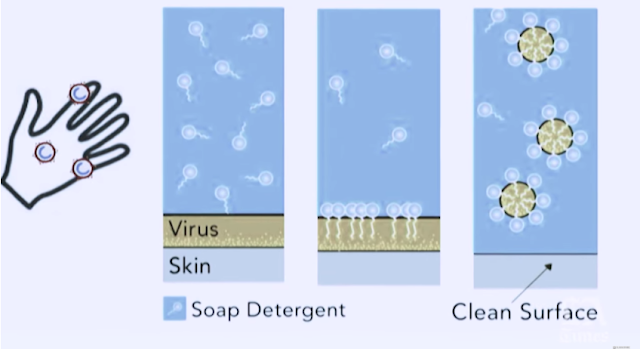 the science of soap