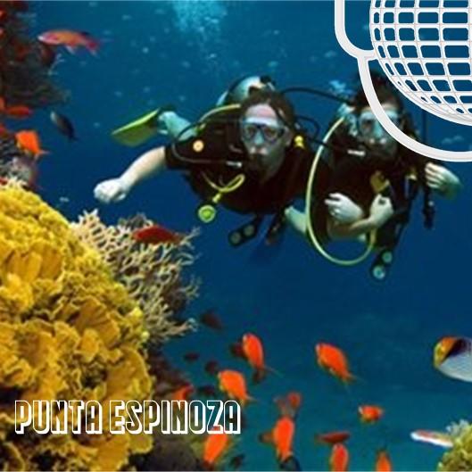 Punta Espinoza: