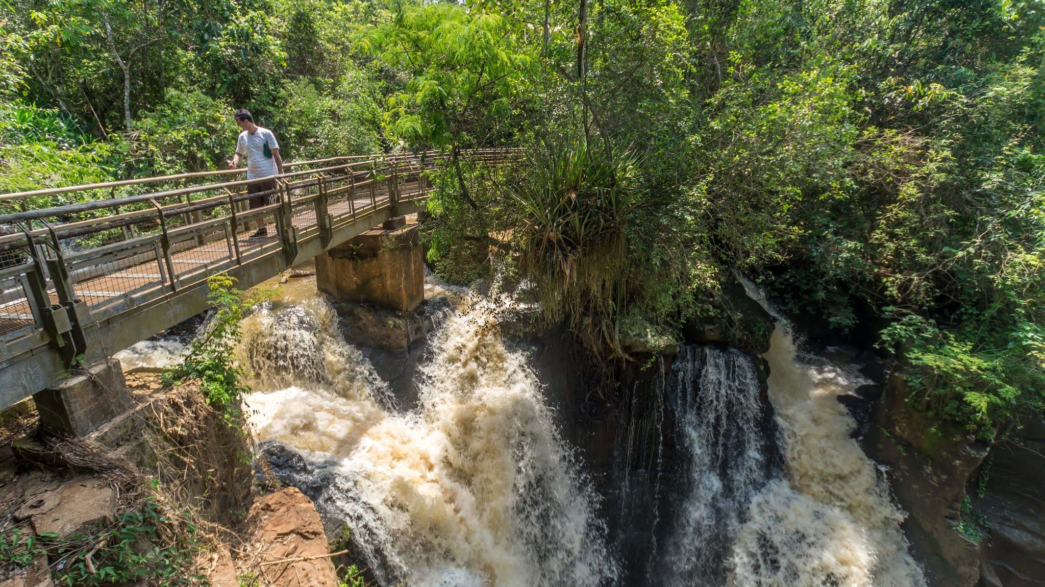 Тропы в парке Игуасу в Аргентине