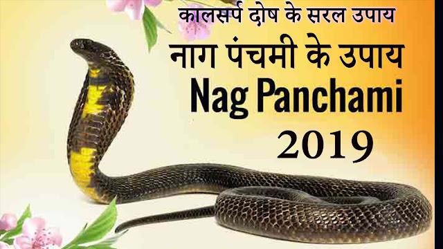 Nag Panchami 2019  Kaal Sarp Dosh Ke Upay