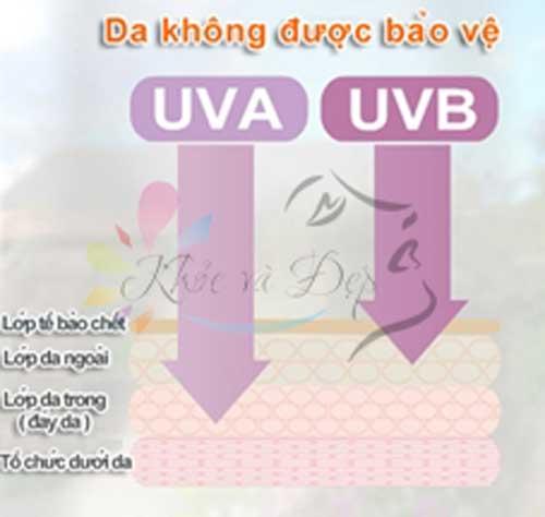 Tia UVA và tia UVB có nguy hại gì cho da bạn