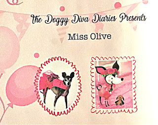 Doggy Diva Diaries  Furever Friends  Miss Olive