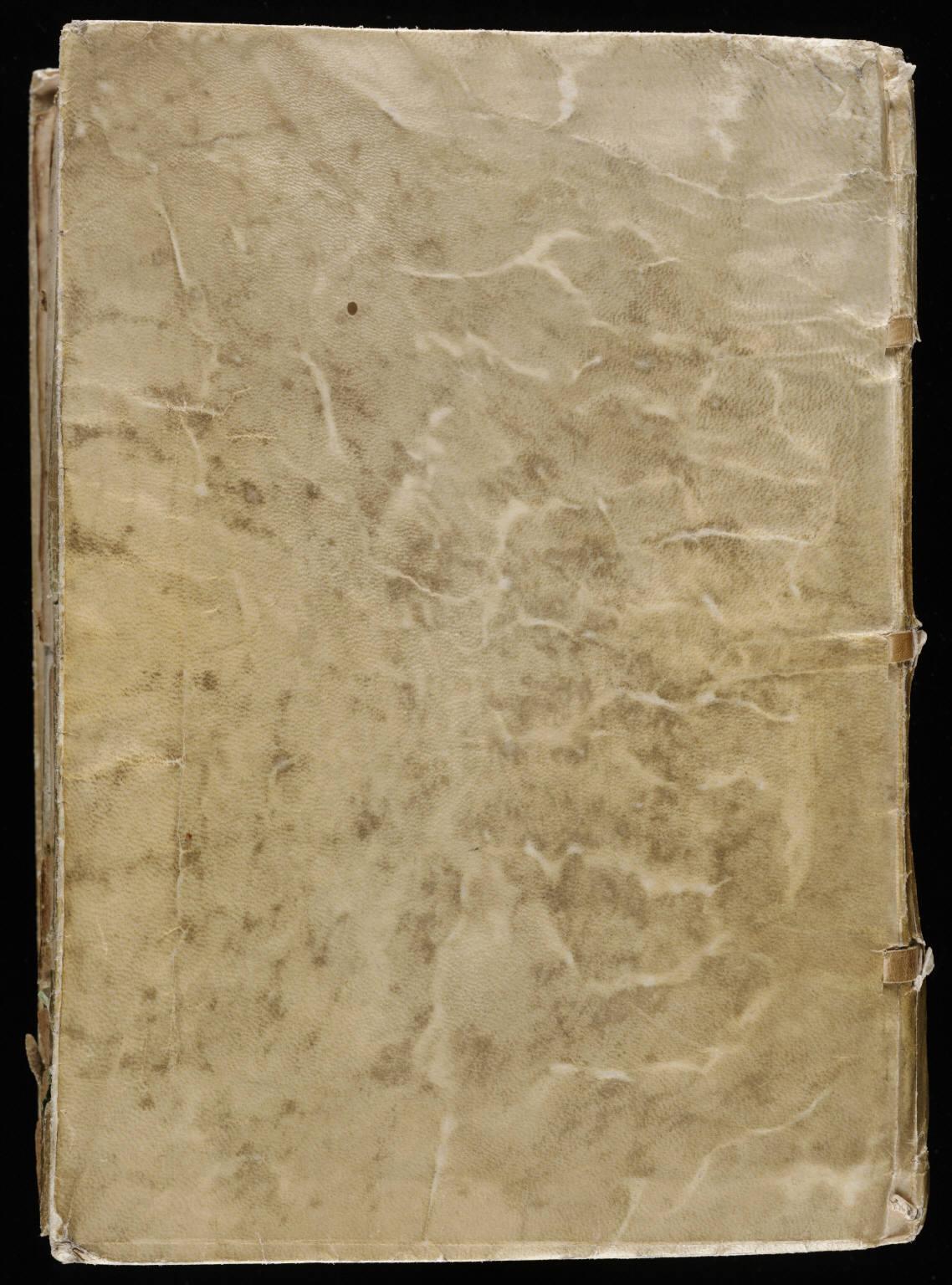 manuscrito207