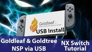 Install NSPs over USB