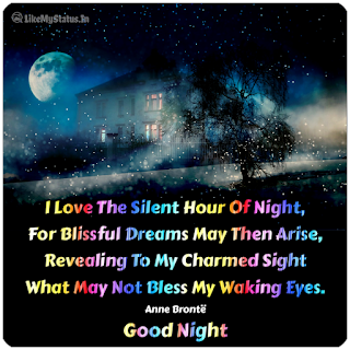 I Love The Silent Hour Of Night, For Blissful Dreams May Then Arise, Revealing To My Charmed Sight What May Not Bless My Waking Eyes. Anne Brontë