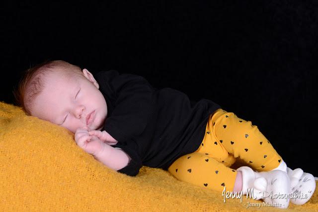 photographe bébé famille maternité Les Essarts, La chaize le vicomte, la ferrière