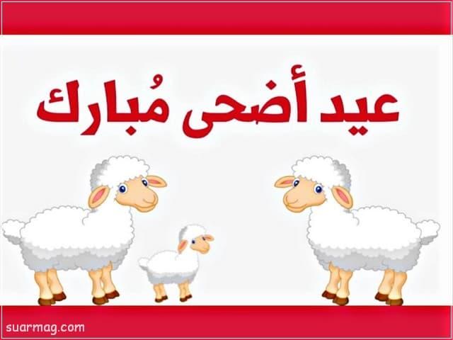 بوستات عيد الاضحى 12 | Eid Al-Adha Posts 12
