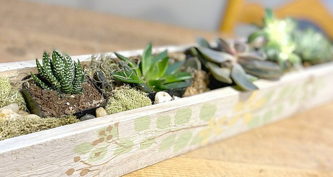 Make a Stenciled Rustic DIY Succulent Planter