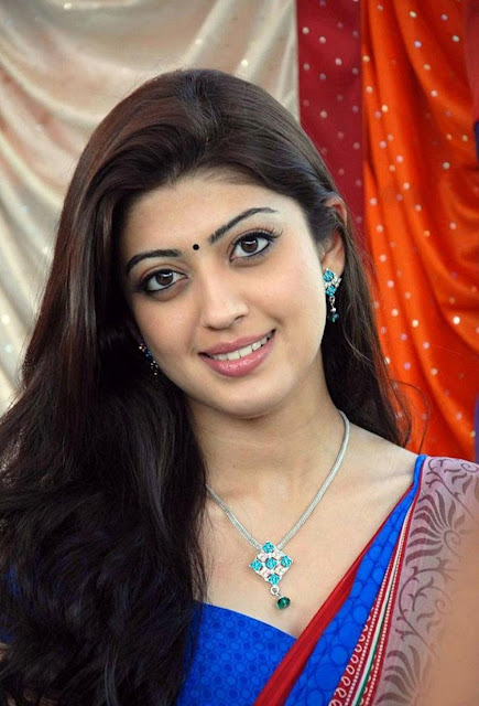 Tollywood Celebrities  Pranitha Subhash Profile