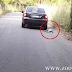 Άρτα :Στις 24/3/2020 η δίκη άνδρα που έσερνε  σκύλο με αυτοκίνητο στην Ελεούσα