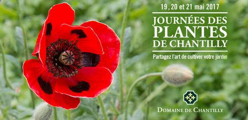 Sorties-Parcs,Jardins et Châteaux-Paris à l'ouest