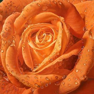flores-rosas en-cuadros-hiperrealistas pinturas-flores-hiperrealismo